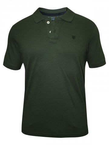 https://static6.cilory.com/131202-thickbox_default/numero-uno-dark-olive-solid-polo-t-shirt.jpg