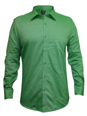 https://static4.cilory.com/158720-thickbox_default/turtle-green-solid-formal-shirt.jpg