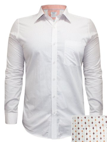 Turtle Pure Cotton Cream Printed Shirt at cilory