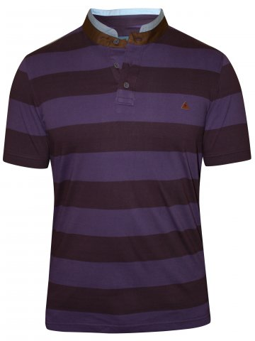 https://d38jde2cfwaolo.cloudfront.net/212491-thickbox_default/turtle-purple-polo-stripes-t-shirt.jpg