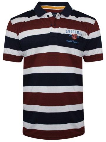https://static5.cilory.com/316709-thickbox_default/peter-england-stripes-polo-t-shirt.jpg