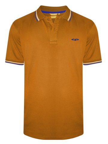 https://static9.cilory.com/318580-thickbox_default/colorplus-monet-orange-tipping-polo-t-shirt.jpg