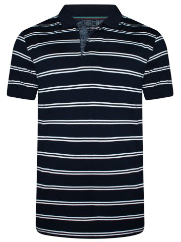https://static4.cilory.com/376140-thickbox_default/peter-england-navy-white-stripes-polo-t-shirt.jpg