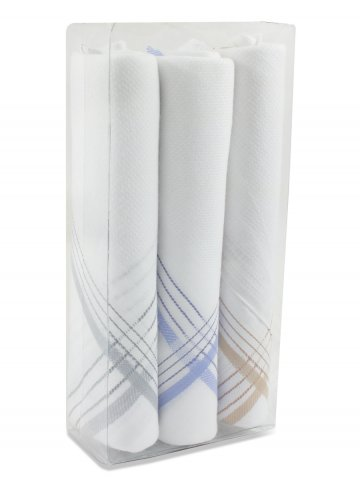 https://static6.cilory.com/381765-thickbox_default/nologo-mens-handkerchiefs-pack-of-3.jpg